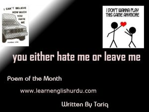 Poem-of-the-month-you-hate-me-300x225 You either hate me or leave me - Poem Written By Tariq