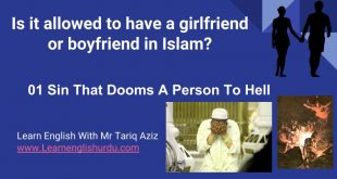 Is it allowed to have a girlfriend or boyfriend in Islam? 2