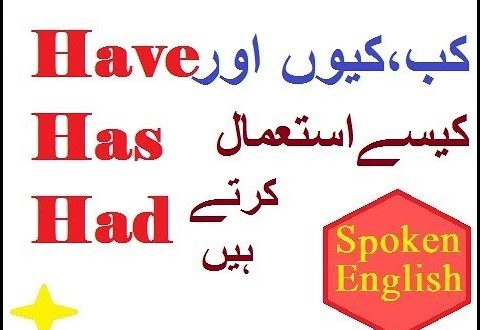 HAVE, HAS, HAD – English Grammar Basics In Urdu