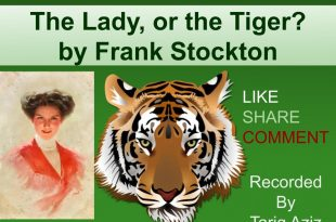 THE LADY OR TIGER NOVEL