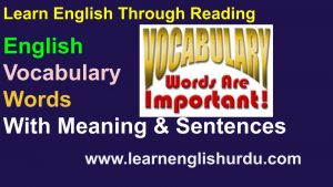 Vocabulary Words With Meaning & Sentences