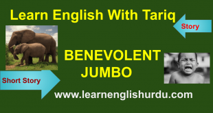 Benevolent Jumbo Courage Story In Urdu